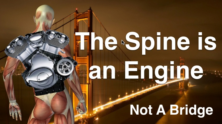 The Spine is an Engine, Not a Bridge